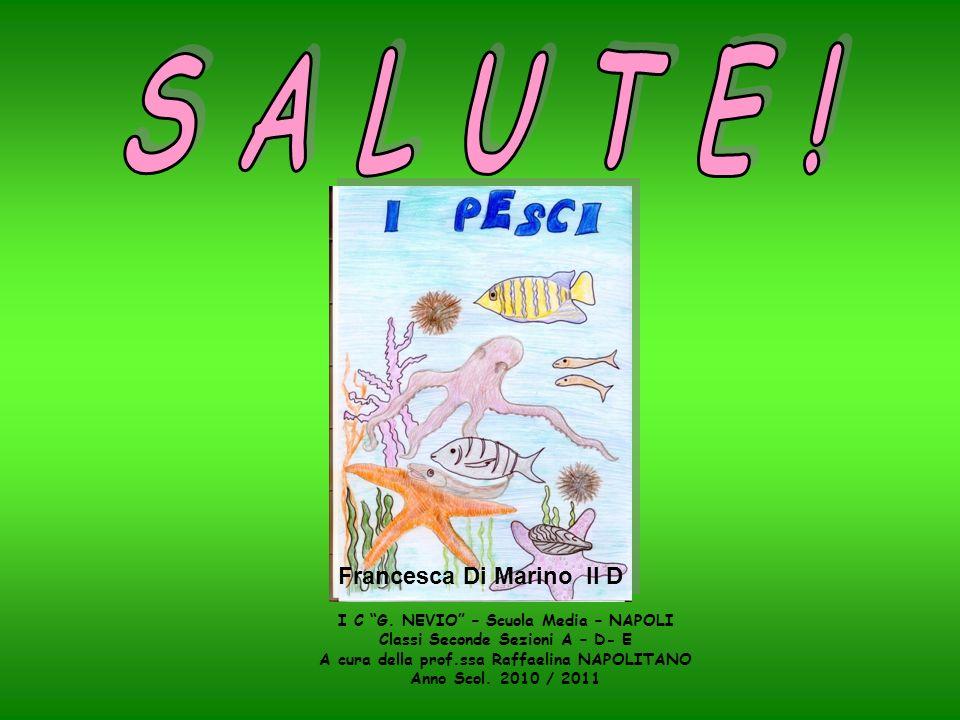 Francesca Di Marino II D I C G. NEVIO – Scuola Media – NAPOLI Classi Seconde Sezioni A – D- E A cura della prof.ssa Raffaelina NAPOLITANO Anno Scol. 2