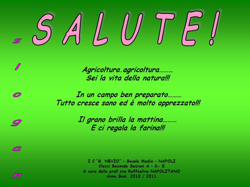 Agricoltura.agricoltura……… Sei la vita della natura!!! In un campo ben preparato……… Tutto cresce sano ed è molto apprezzato!!! Il grano brilla la matt