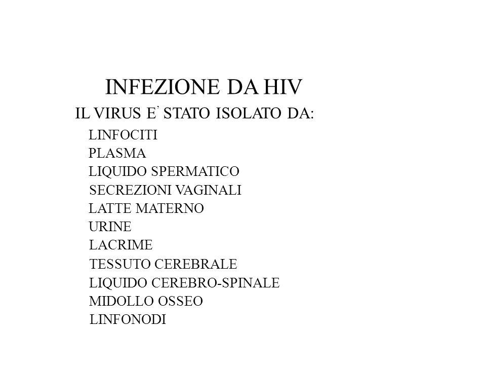 INFEZIONE DA HIV IL VIRUS E STATO ISOLATO DA: LINFOCITI PLASMA LIQUIDO SPERMATICO SECREZIONI VAGINALI LATTE MATERNO URINE LACRIME TESSUTO CEREBRALE LIQUIDO CEREBRO-SPINALE MIDOLLO OSSEO LINFONODI