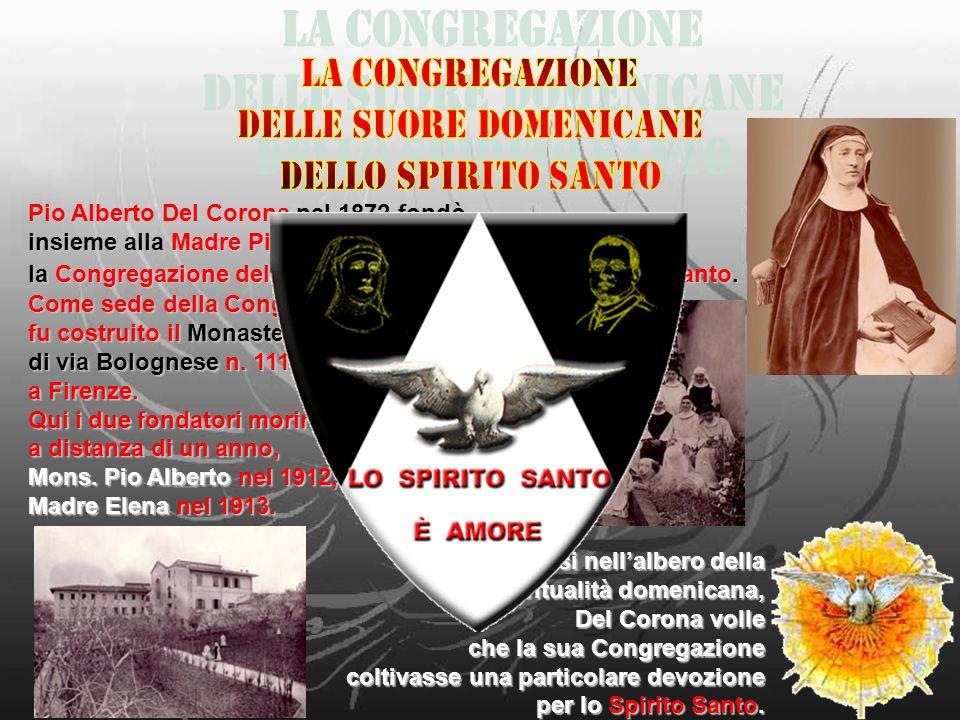 Pio Alberto Del Corona nel 1872 fondò, insieme alla Madre Pia Elena Bonaguidi, la Congregazione delle Suore Domenicane dello Spirito Santo. Innestando