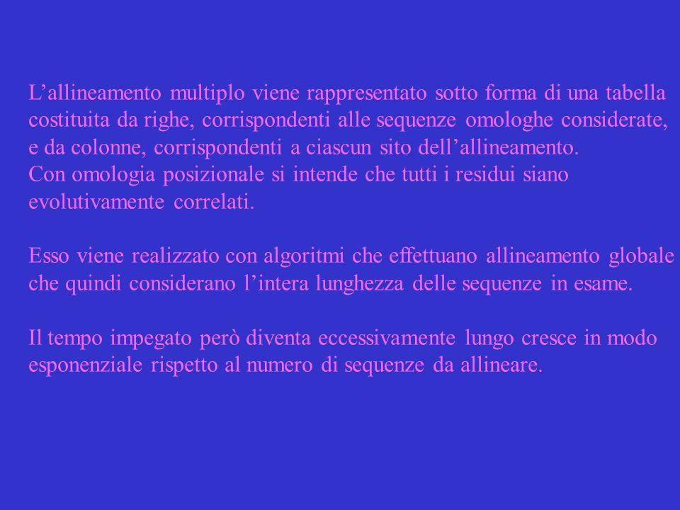 Metodo allineamento progressivo: si basa sullipotesi che le sequenze che devono essere allineate siano filogeneticamente correlate.