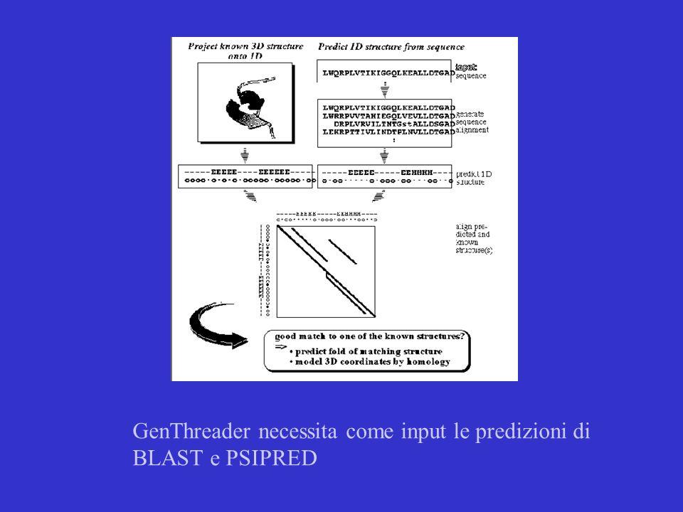 Lutlimo approccio utilizzabile è il Modeilin AB INITIO Si basa sullenergia e parte esclusivamente dalla sequenza primaria.