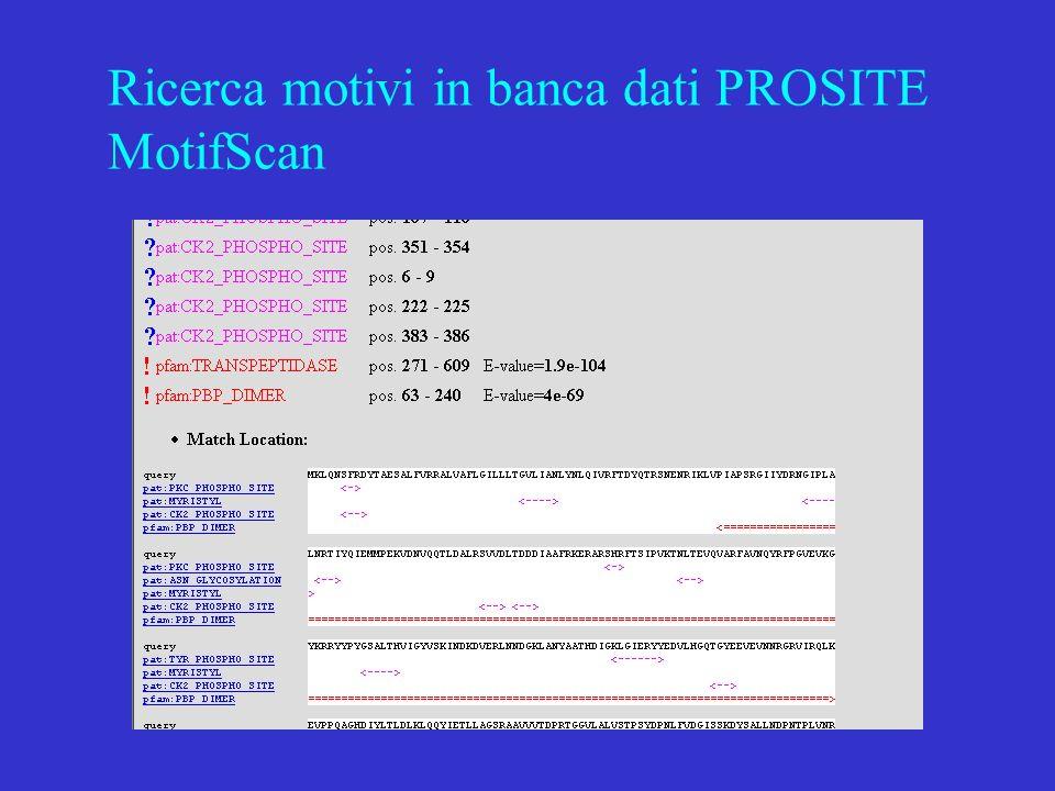 Ricerca motivi in banca dati PROSITE MotifScan