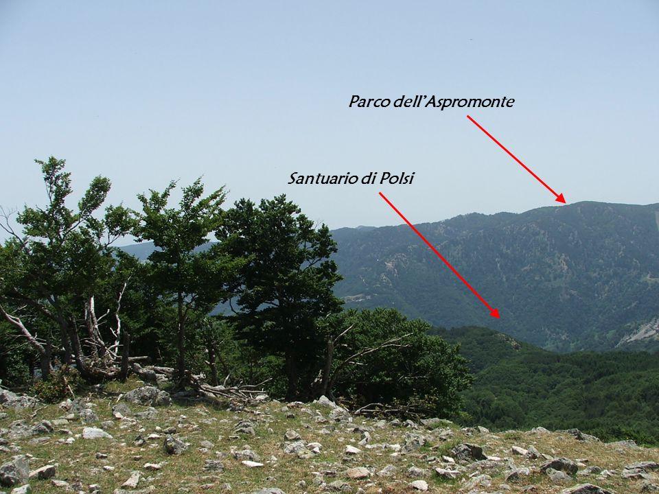 Santuario di Polsi Parco dellAspromonte