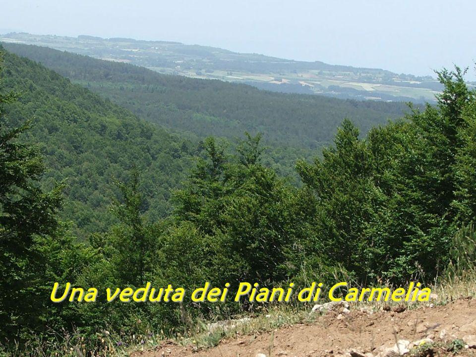 Una veduta dei Piani di Carmelia