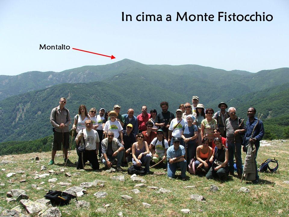 In cima a Monte Fistocchio Montalto