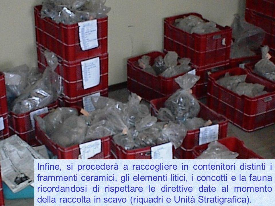 Infine, si procederà a raccogliere in contenitori distinti i frammenti ceramici, gli elementi litici, i concotti e la fauna ricordandosi di rispettare le direttive date al momento della raccolta in scavo (riquadri e Unità Stratigrafica).