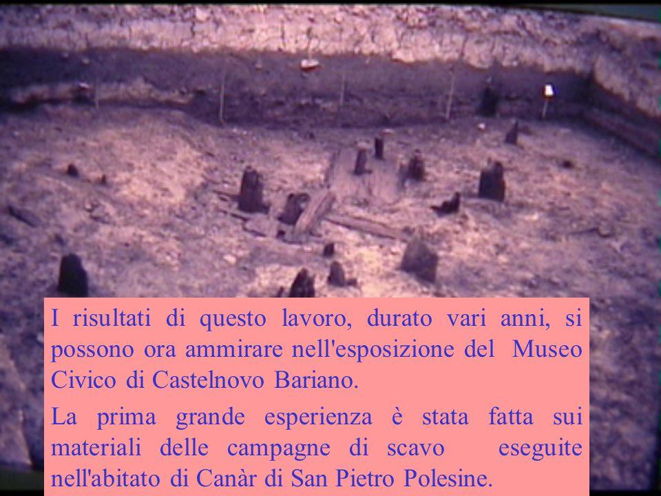I risultati di questo lavoro, durato vari anni, si possono ora ammirare nell esposizione del Museo Civico di Castelnovo Bariano.