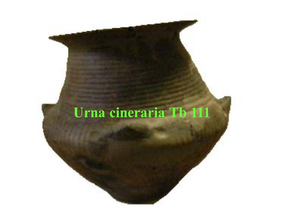 Urna cineraria Tb 111