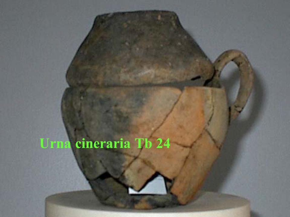 Urna cineraria Tb 24