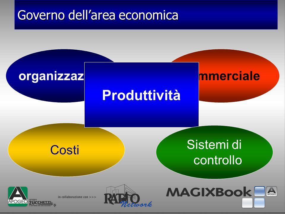 organizzazione Costi commerciale Produttività Sistemi di controllo Governo dellarea economica