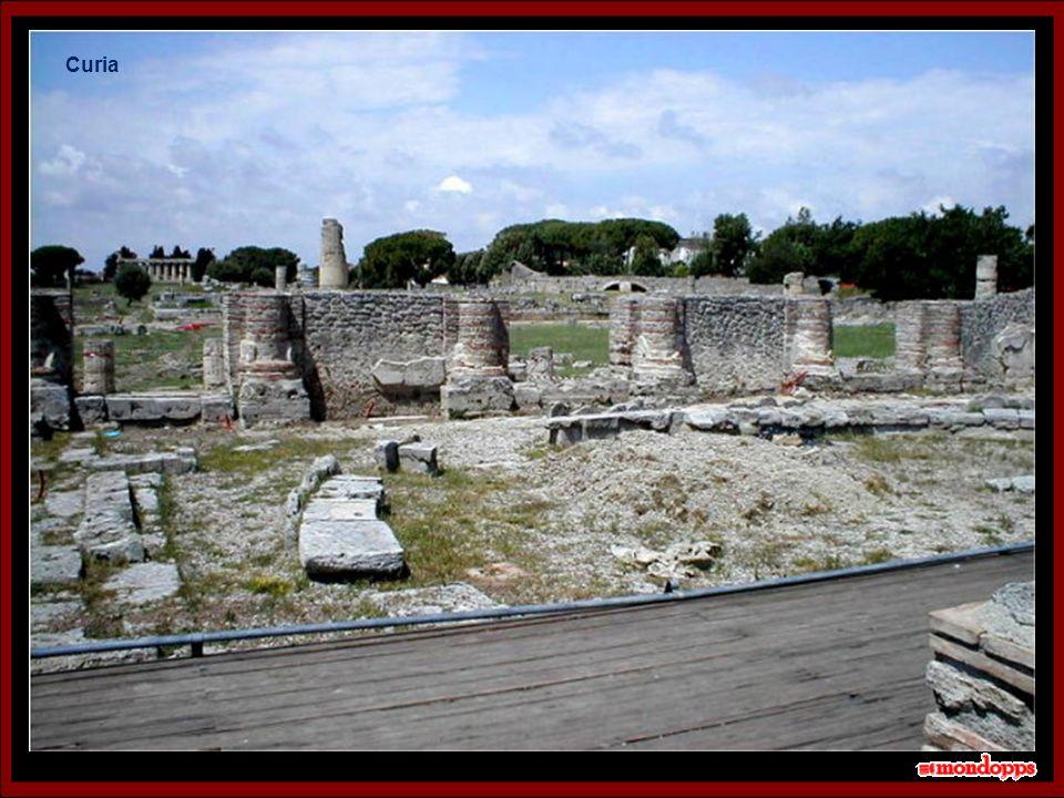 Tempio di Nettuno 20 secondi