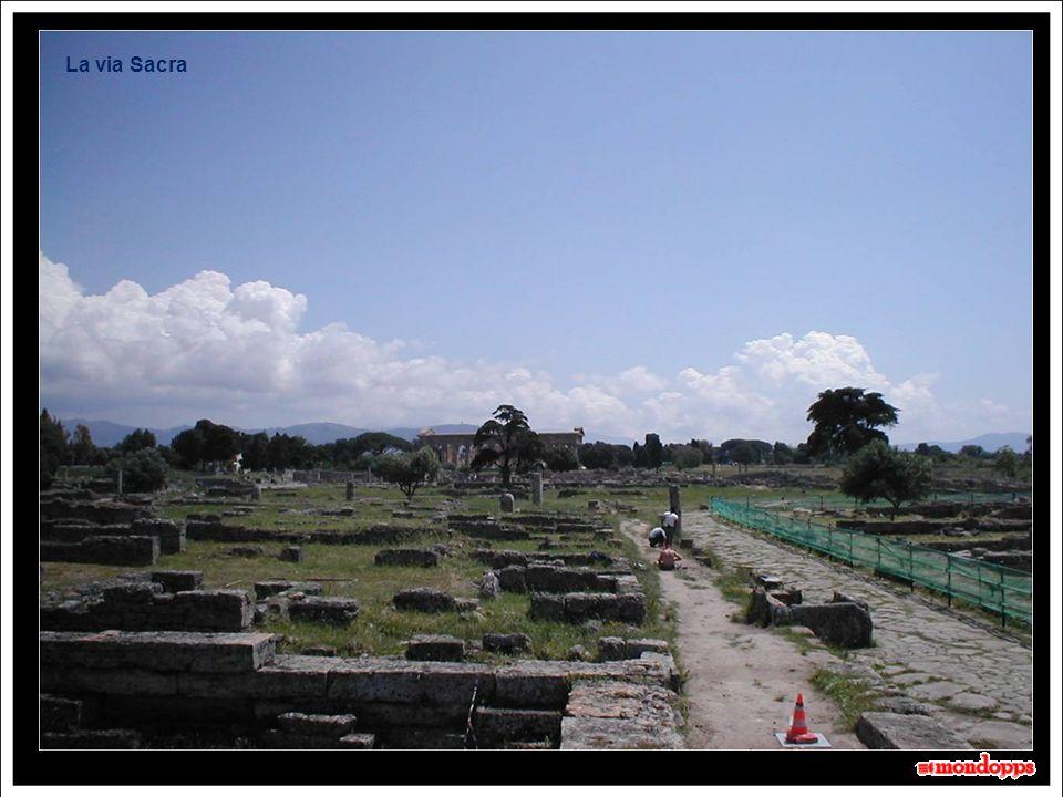 Un tratto delle mura di cinta: Lunghe 4,75 km e dotate di 28 torri, sono ben conservate e si possono riconoscere le fasi costruttive lucana e romana.