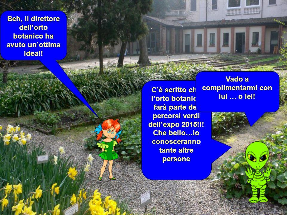Cè scritto che lorto botanico farà parte dei percorsi verdi dellexpo 2015!!.