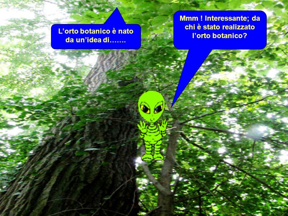 Mmm ! Interessante; da chi è stato realizzato lorto botanico Lorto botanico è nato da unidea di…….