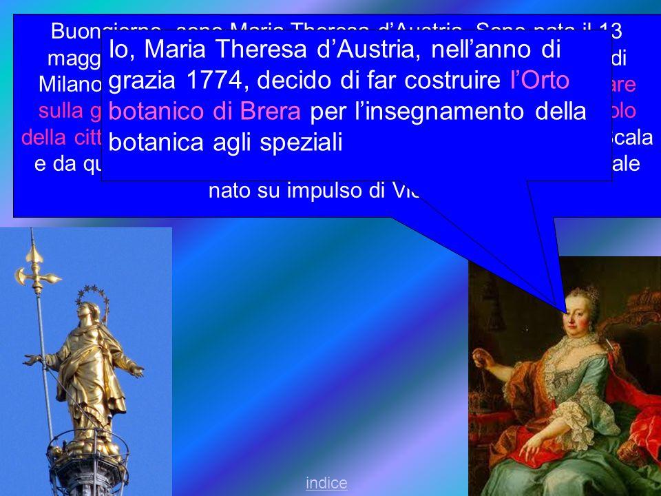 Buongiorno, sono Maria Theresa dAustria. Sono nata il 13 maggio 1717 a Vienna.