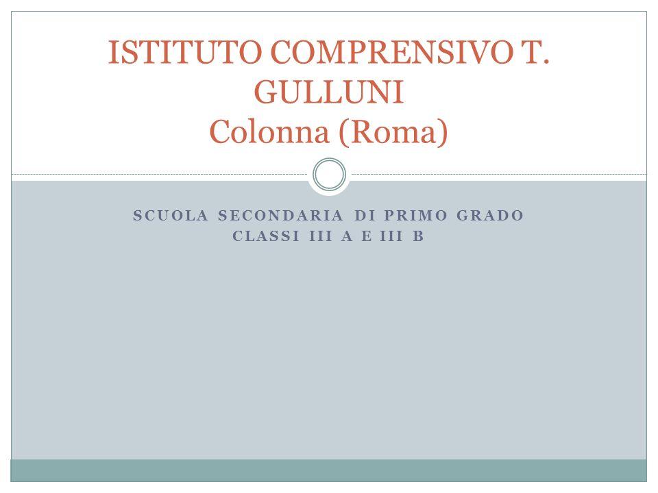 SCUOLA SECONDARIA DI PRIMO GRADO CLASSI III A E III B ISTITUTO COMPRENSIVO T.