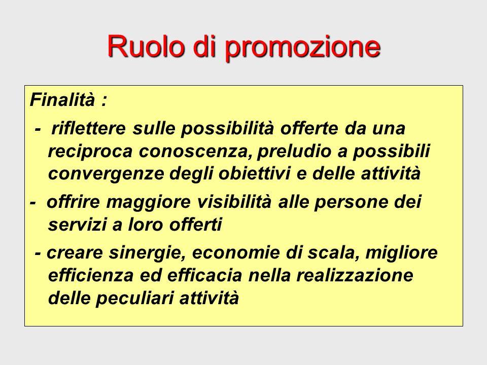 Ruolo di promozione Finalità : - riflettere sulle possibilità offerte da una reciproca conoscenza, preludio a possibili convergenze degli obiettivi e