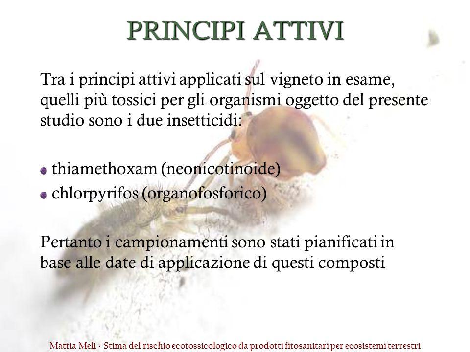 PRINCIPI ATTIVI Tra i principi attivi applicati sul vigneto in esame, quelli più tossici per gli organismi oggetto del presente studio sono i due inse