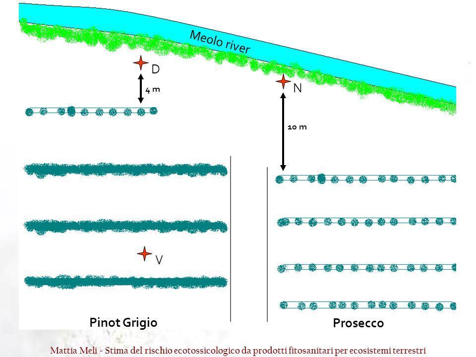 Pinot Grigio Prosecco Meolo river D N V 10 m 4 m Mattia Meli - Stima del rischio ecotossicologico da prodotti fitosanitari per ecosistemi terrestri