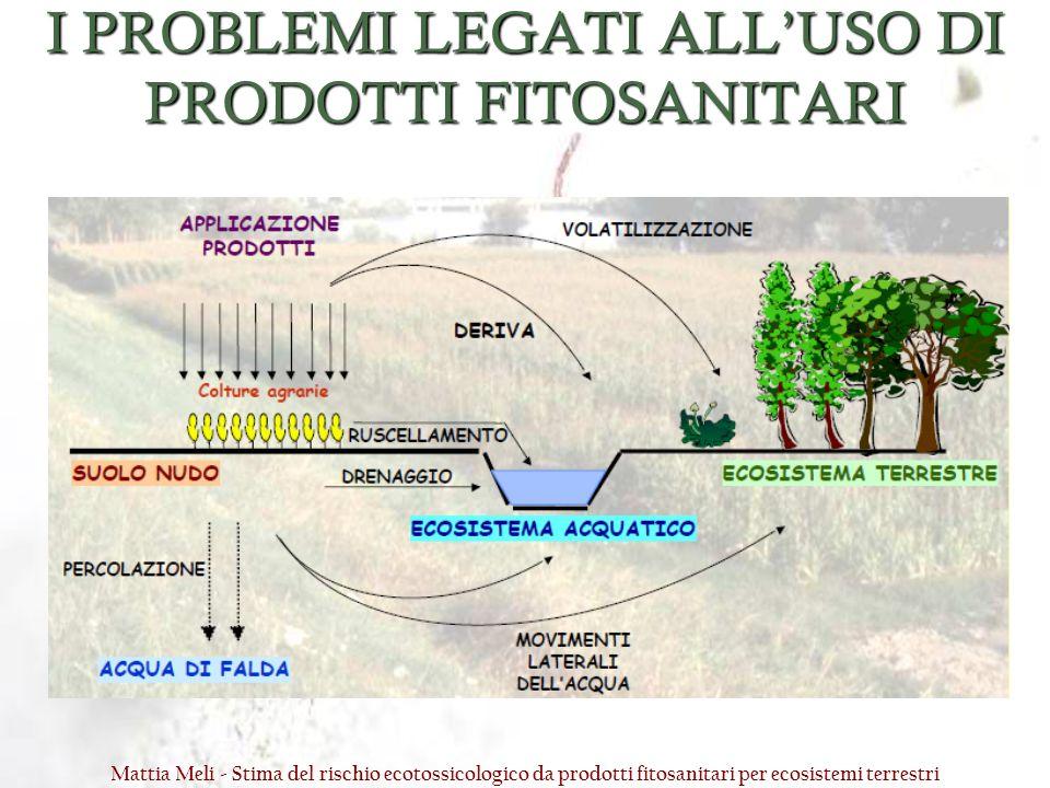 I PROBLEMI LEGATI ALLUSO DI PRODOTTI FITOSANITARI Mattia Meli - Stima del rischio ecotossicologico da prodotti fitosanitari per ecosistemi terrestri