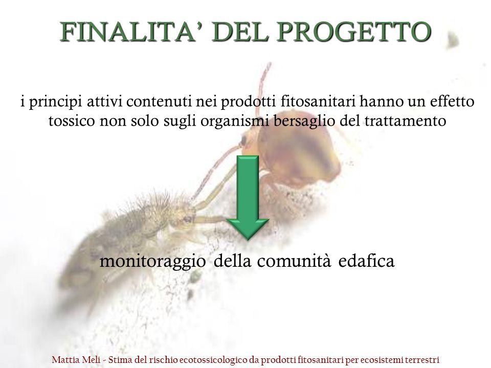 FINALITA DEL PROGETTO i principi attivi contenuti nei prodotti fitosanitari hanno un effetto tossico non solo sugli organismi bersaglio del trattament