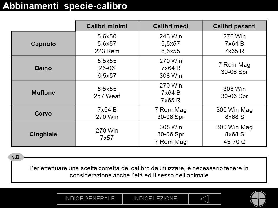 INDICE GENERALEINDICE LEZIONE Abbinamenti specie-calibro Per effettuare una scelta corretta del calibro da utilizzare, è necessario tenere in consider