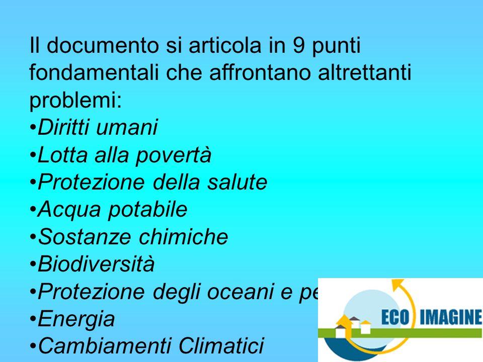 Il documento si articola in 9 punti fondamentali che affrontano altrettanti problemi: Diritti umani Lotta alla povertà Protezione della salute Acqua potabile Sostanze chimiche Biodiversità Protezione degli oceani e pesca Energia Cambiamenti Climatici