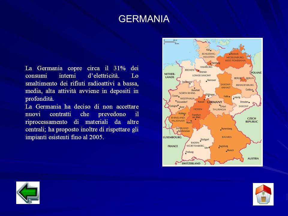 GERMANIA La Germania copre circa il 31% dei consumi interni delettricità.