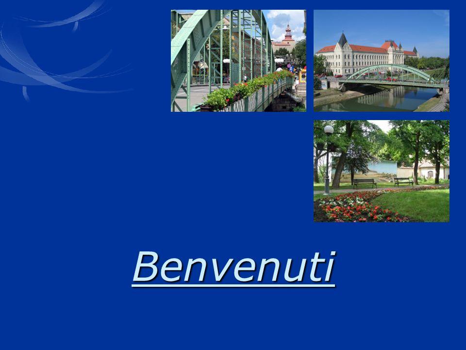 www.zrenjanin.rs Benvenuti