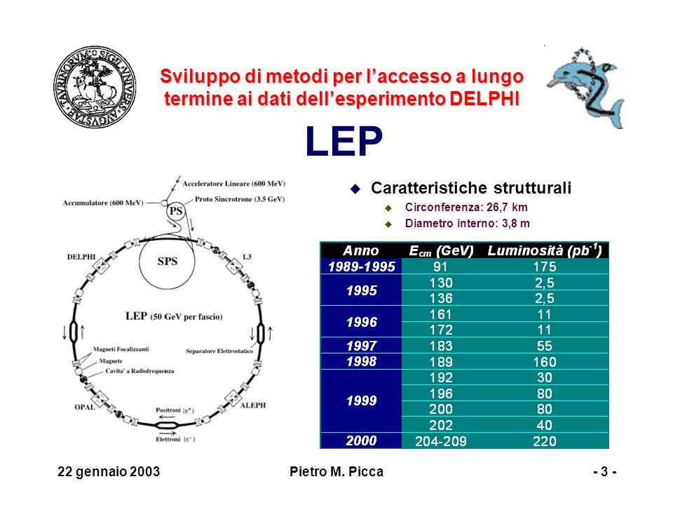 22 gennaio 2003Pietro M. Picca- 4 -