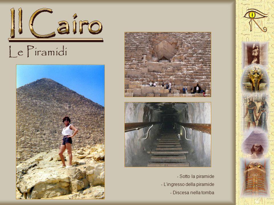 Le Piramidi - Siamo a Giza sulla piana delle piramidi - Piramidi di Cheope e Chefren - La Sfinge