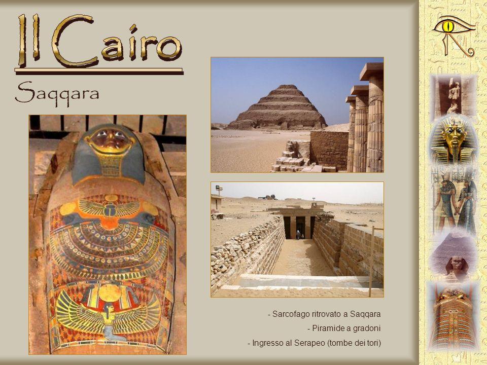 Memphis - Statua incompiuta di Ramses II - La sfinge di alabastro - Particolare della statua