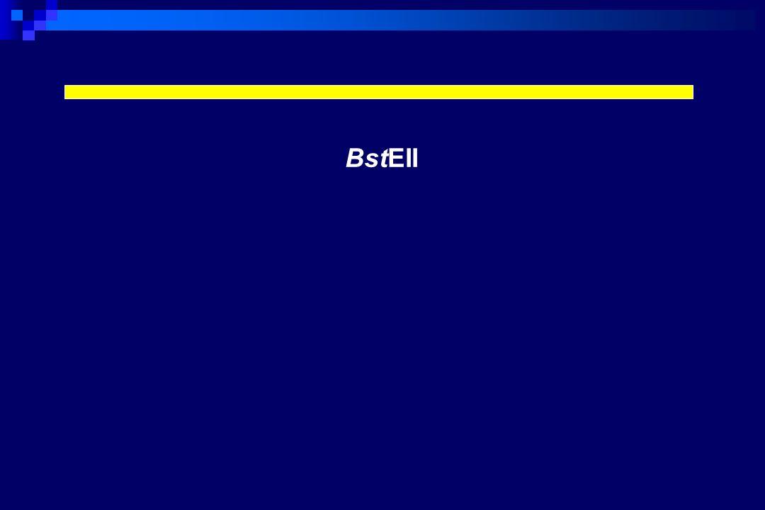 I frammenti di restrizione BstEII nessuna digestione (440 bp) produzione di 2-3 frammenti (320-80 bp) HaeIII produzione di 2-5 frammenti (265-40 bp)