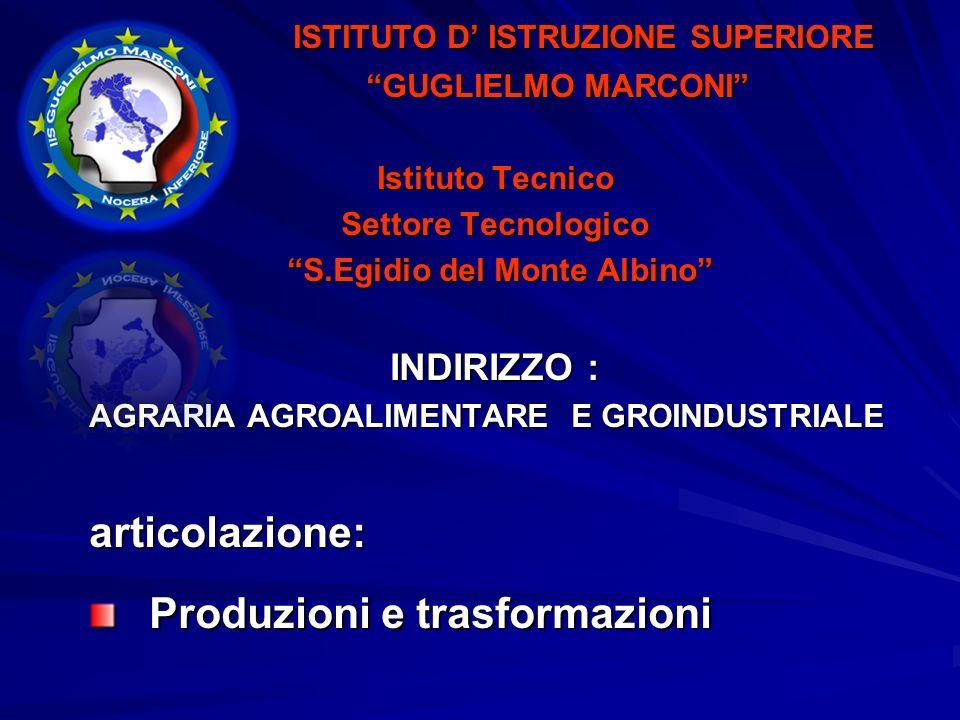 ISTITUTO DISTRUZIONE SUPERIORE ISTITUTO DISTRUZIONE SUPERIORE GUGLIELMO MARCONI GUGLIELMO MARCONI Istituto Tecnico Istituto Tecnico Settore Tecnologico Settore Tecnologico S.Egidio del Monte Albino S.Egidio del Monte Albino INDIRIZZO : COSTRUZIONI AMBIENTE E TERRITORIO articolazione: Geotecnico