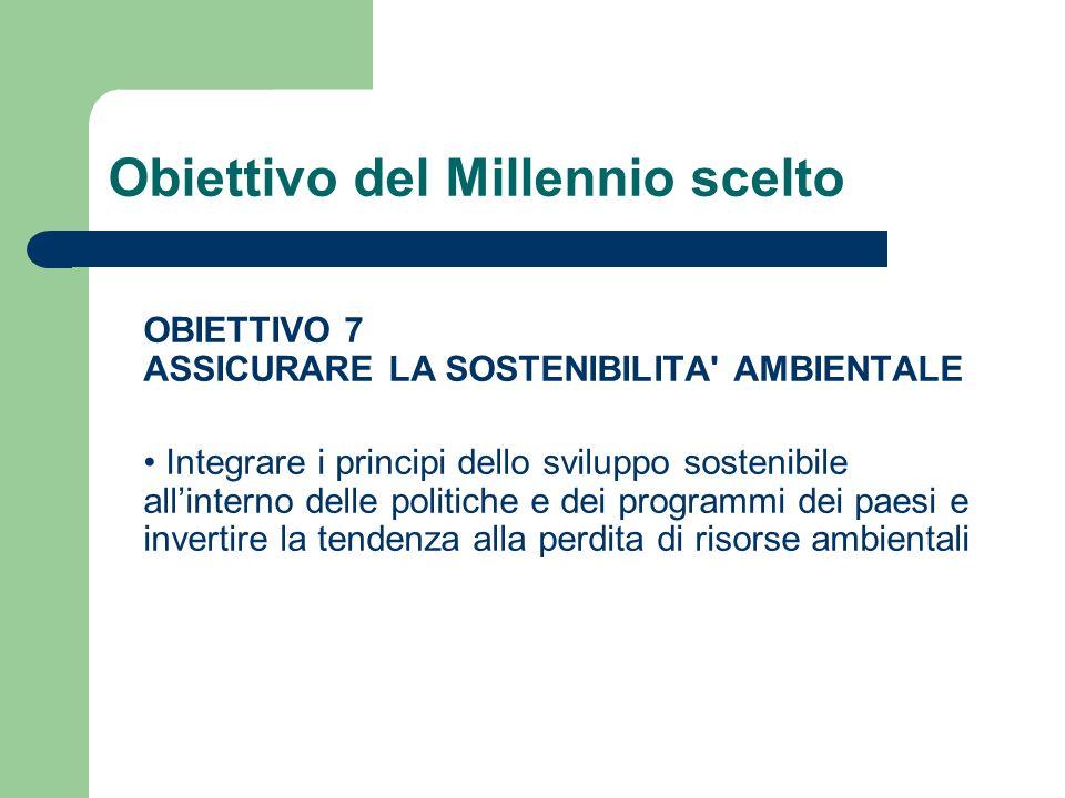 Obiettivo del Millennio scelto OBIETTIVO 7 ASSICURARE LA SOSTENIBILITA AMBIENTALE Integrare i principi dello sviluppo sostenibile allinterno delle politiche e dei programmi dei paesi e invertire la tendenza alla perdita di risorse ambientali