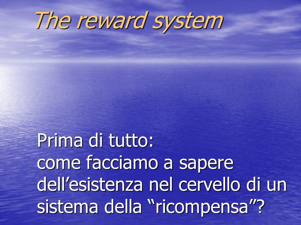Prima di tutto: come facciamo a sapere dellesistenza nel cervello di un sistema della ricompensa? The reward system