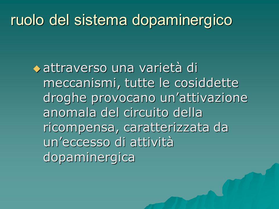 ruolo del sistema dopaminergico attraverso una varietà di meccanismi, tutte le cosiddette droghe provocano unattivazione anomala del circuito della ri