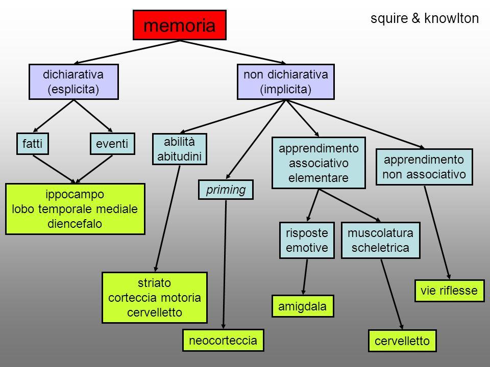 squire & knowlton memoria dichiarativa (esplicita) non dichiarativa (implicita) fattieventi priming apprendimento associativo elementare apprendimento