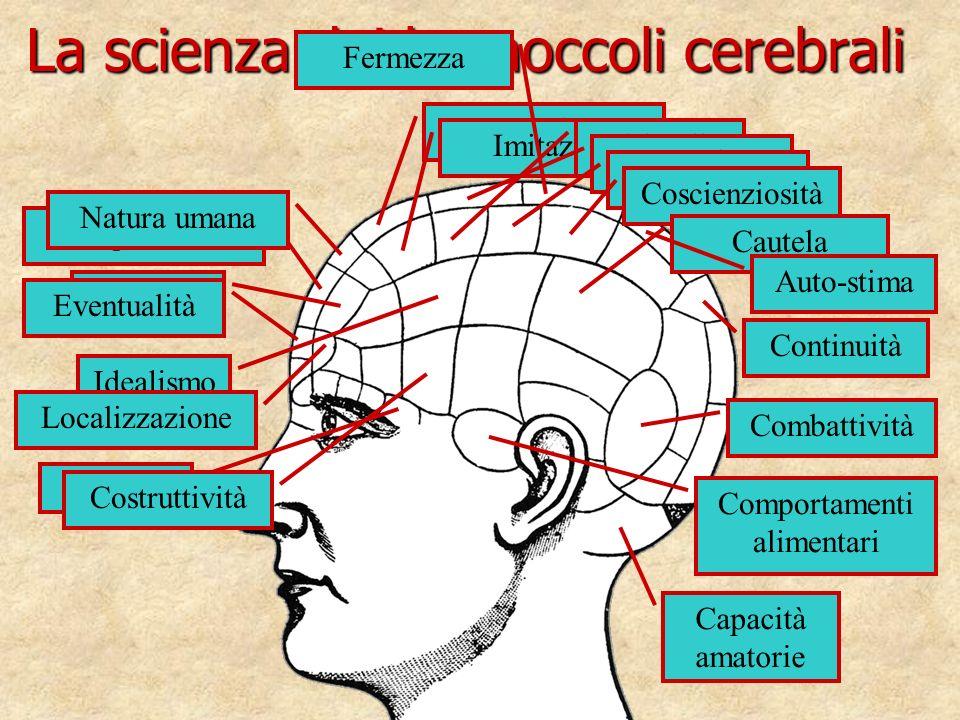 La scienza dei bernoccoli cerebrali Causalità Idealismo Calcolo Comportamenti alimentari Eventualità Localizzazione Comparazione Natura umana Benevole