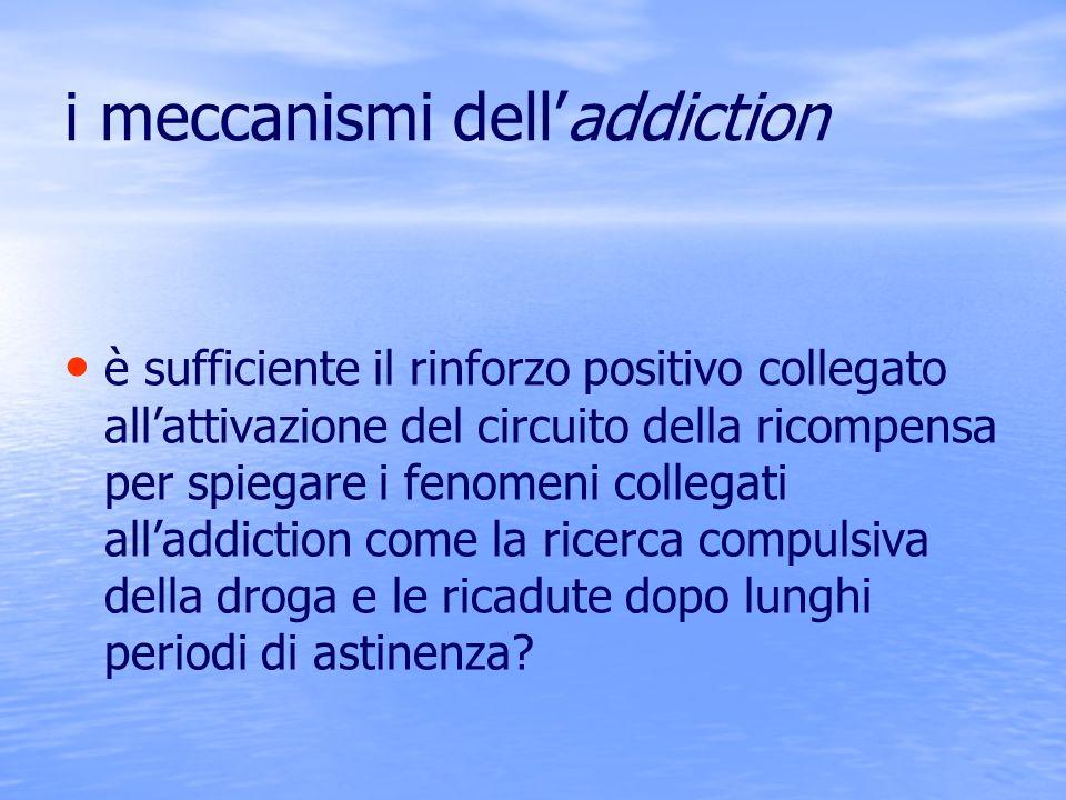 i meccanismi delladdiction è sufficiente il rinforzo positivo collegato allattivazione del circuito della ricompensa per spiegare i fenomeni collegati