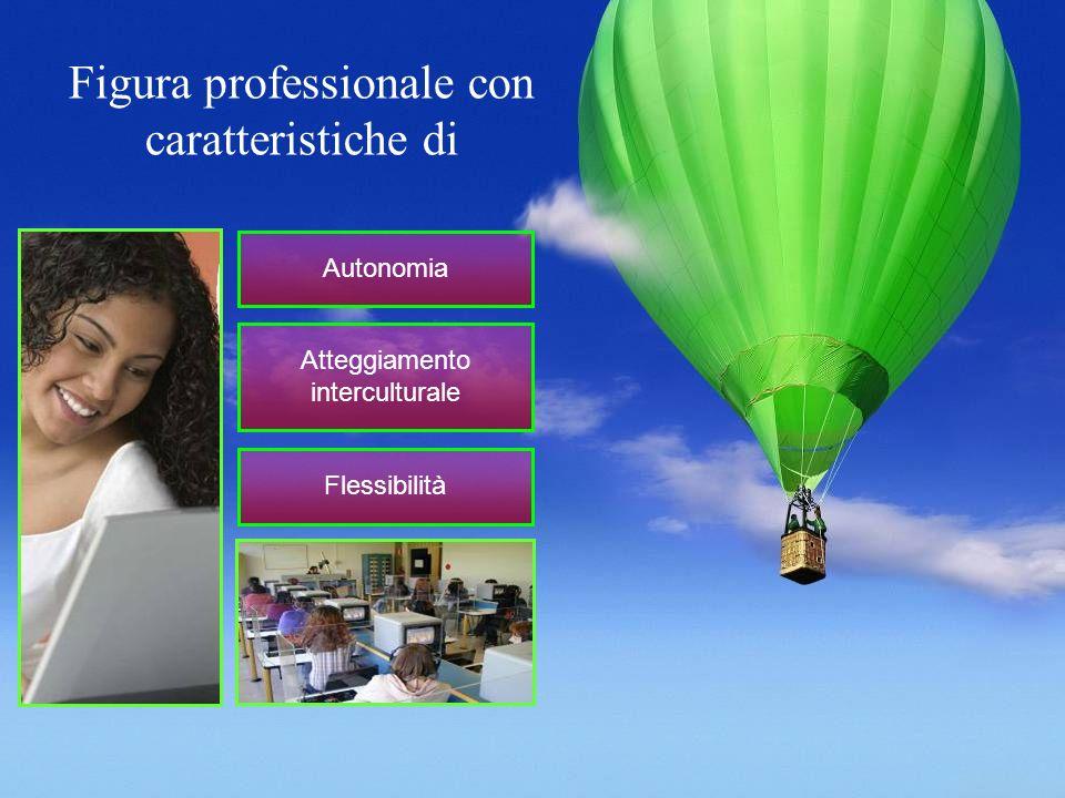 Figura professionale con caratteristiche di Autonomia Atteggiamento interculturale Flessibilità