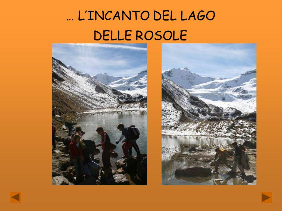 … LINCANTO DEL LAGO DELLE ROSOLE