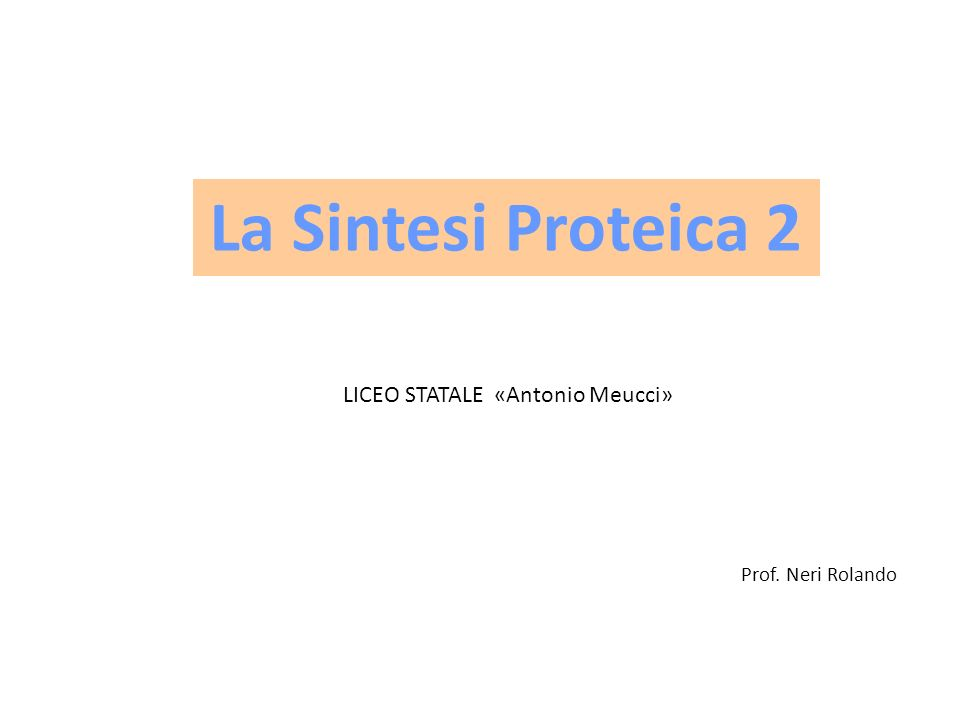Prof. Neri Rolando La Sintesi Proteica 2 LICEO STATALE «Antonio Meucci»