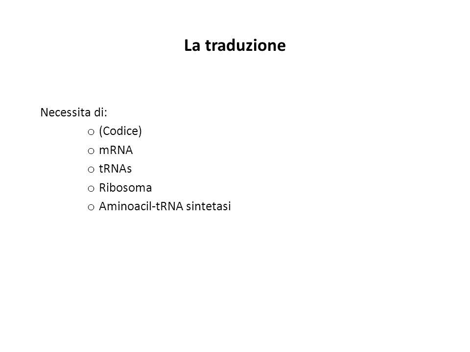 Il codice genetico Ma come si fa a passare dal «linguaggio» degli acidi nucleici (che utilizza 4 «lettere»)… … al «linguaggio» delle proteine (che utilizza 20 «lettere»).
