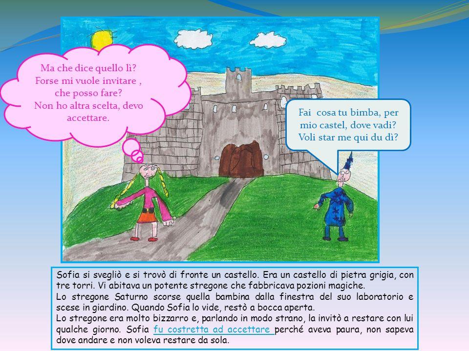 Sofia si svegliò e si trovò di fronte un castello. Era un castello di pietra grigia, con tre torri. Vi abitava un potente stregone che fabbricava pozi