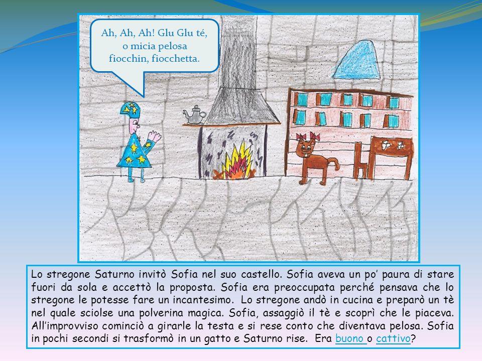 Lo stregone Saturno invitò Sofia nel suo castello. Sofia aveva un po paura di stare fuori da sola e accettò la proposta. Sofia era preoccupata perché