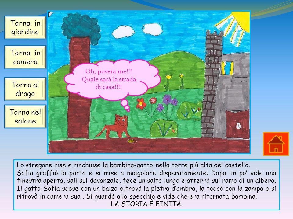Lo stregone rise e rinchiuse la bambina-gatto nella torre più alta del castello. Sofia graffiò la porta e si mise a miagolare disperatamente. Dopo un