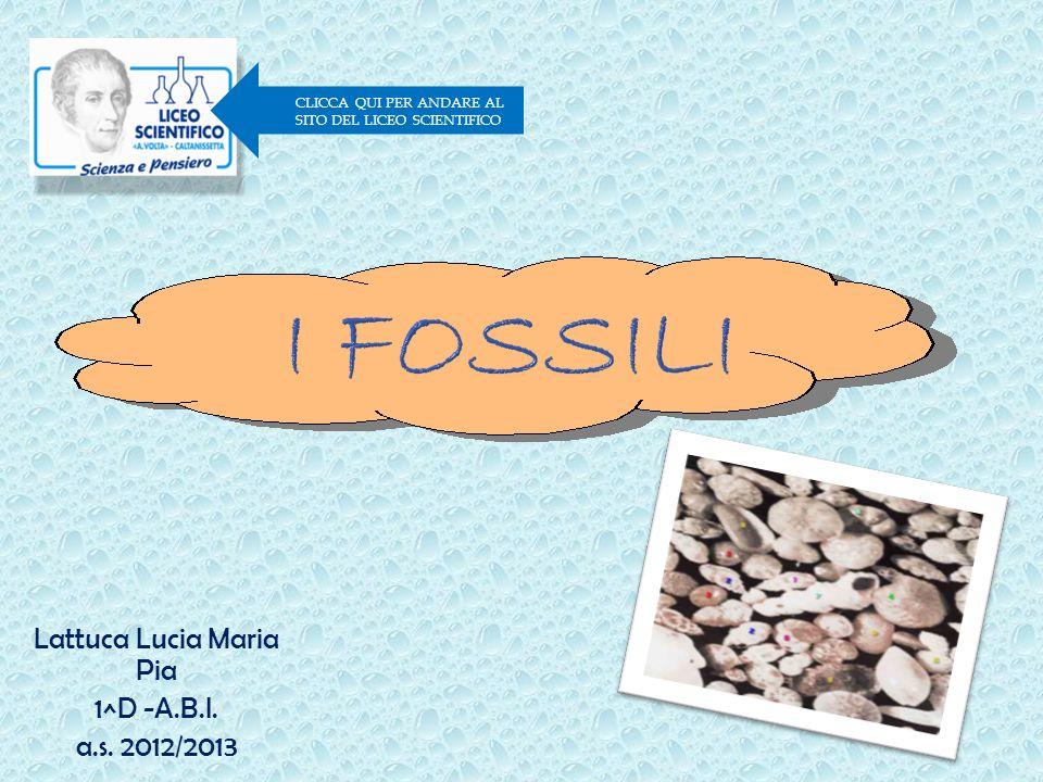 Lattuca Lucia Maria Pia 1^D -A.B.I. a.s. 2012/2013 CLICCA QUI PER ANDARE AL SITO DEL LICEO SCIENTIFICO