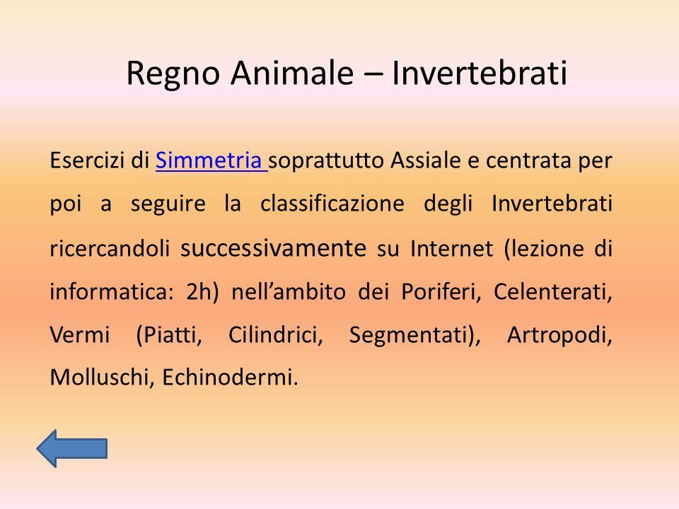 Regno Animale – Invertebrati Esercizi di Simmetria soprattutto Assiale e centrata per poi a seguire la classificazione degli Invertebrati ricercandoli